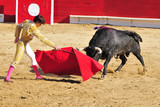 Bull Charging Matador withCape