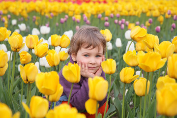 little girl sit on field of tulips