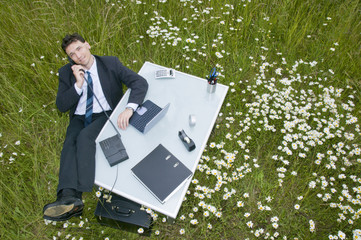 Büro im Grünen, Chef am Schreibtisch, Vogelperspektive