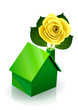 Maison verte et sa rose jaune (reflet)