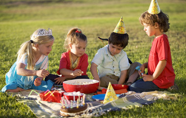 A birthday picnic