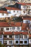 houses in village, anatolia, turkey poster