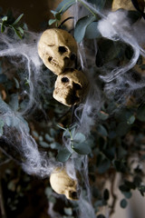 Hallowe'en decorations - skulls and cobwebs