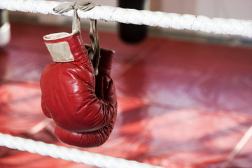 Close up of boxing gloves on the ropes of a boxing ring.