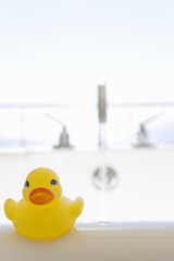 Rubber duck on side of bath