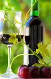 Glass and bottle of red wine with green leaf. - 8147789