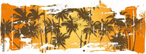 grunge guard palms trees
