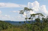 Amazon Basin poster
