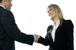Businesswoman shaking hands with male client or colleague
