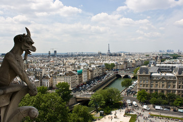 View from the Notre Dame