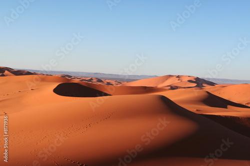 canvas print picture Dune