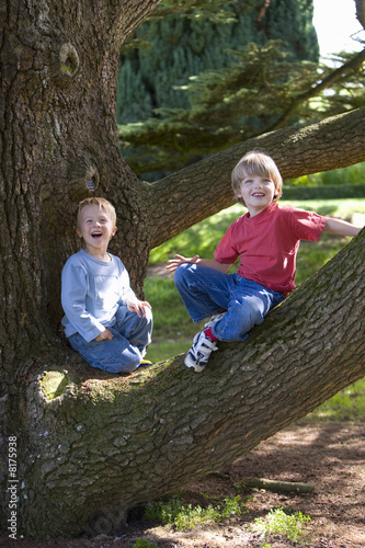 Boy (5-7) and friend climbing tree, smiling