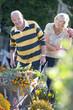 Senior couple gardening, man with wheelbarrow
