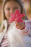 Close up of young girl holding autumn leaf
