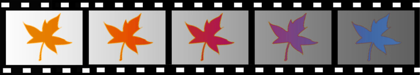 Film frame with image leaf