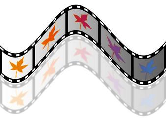 frame of film