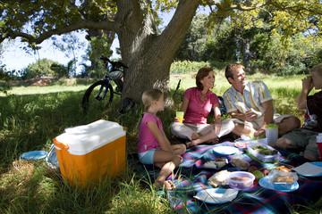 Family of four having picnic beneath tree