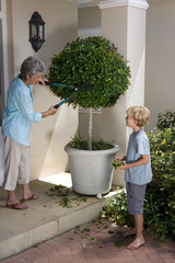 Mother pruning tree in pot, smiling at son (8-10)