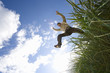 Man jumping from grass outdoors, low angle view