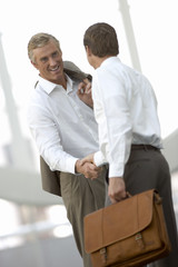 Two businessmen shaking hands, smiling (tilt)
