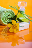 Tranquility Spa and Body Care 6 poster
