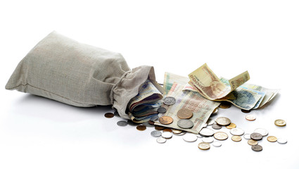 Money sacks, coins and Polish banknotes on a white background