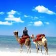 Afrika reise