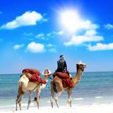 Marokko Reise