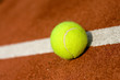 A tennis ball in the court