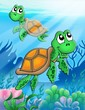 roleta: Little sea turtles
