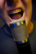 Vocalist & Microphone