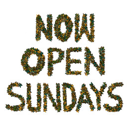 Butterfly Now Open Sundays sign
