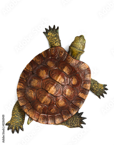 canvas print picture Wooden turtle