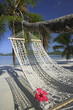 Palm Tree with Hibiscus Flower on Hammock at Mahe', Seychelles