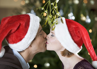 A couple kissing beneath the mistletoe