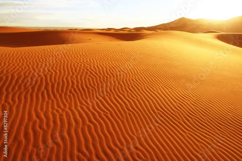 Tuinposter Zandwoestijn Sand desert