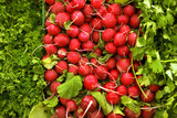 Selection of radishes, cilantro and parsley on display on market stall, close-up (full frame)