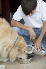 A young boy feeding his dog