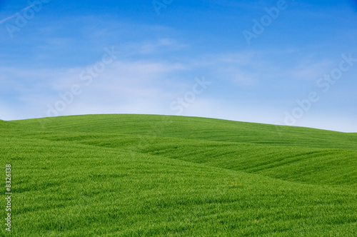 Rolling green hills and blue sky. Tuscany landscape, Italy.
