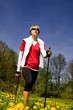 nordic walking through the summer