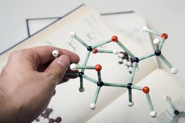 Sugar chemistry