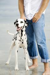 A man with his dog on a beach