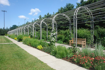 Flower and Plant Arch in Summer