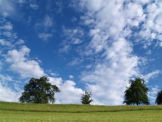 nature...paysage pour rêveries
