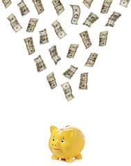 Money raining down on a piggy bank