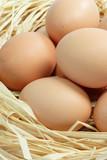 Braune Eier poster