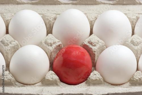 Leinwanddruck Bild Rotes Osterei