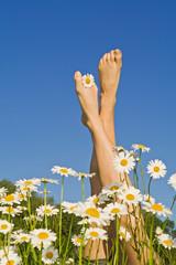 Spring legs