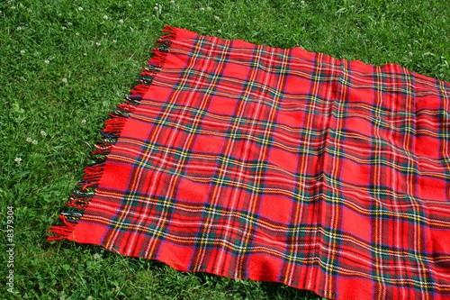 Picnic Plaid - 8379304