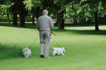 Walking man and two dogs.